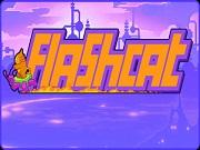 Flash Cat
